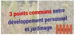 3 points communs entre développement personnel et jardinage Illustration